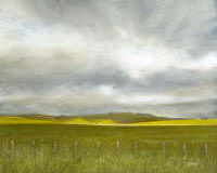 Point Arena Ranch - visit my other gallery for paintings of California